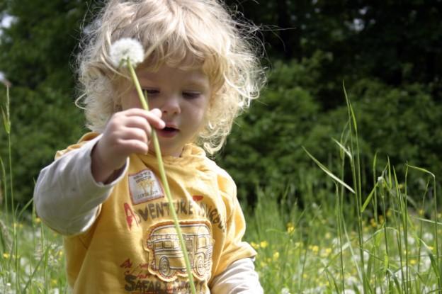 respeto por el bien comun en niños