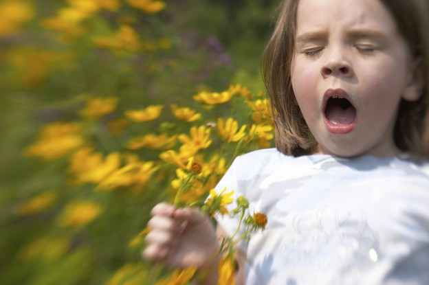 niños alergicos al polen
